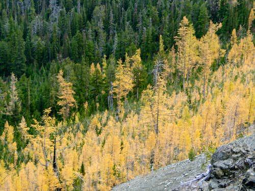 Fall at Longs Pass.