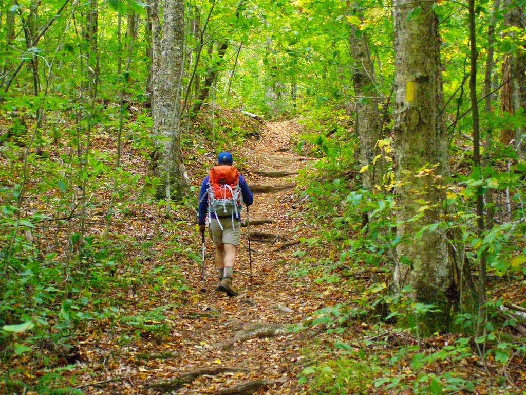 Heading Up the Halebrook Trail