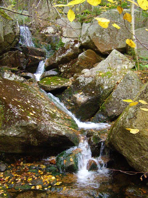 Mt. Hale stream