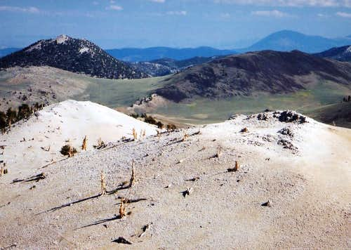 Blanco Mtn. and County Line Hill from Campito Mtn., 11,543\'