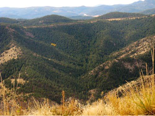Mt Falcon Seen from Mt. Morrison