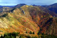 Fall Colors on Church Fork Peak