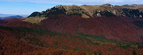 Bratocea, Ciucaş