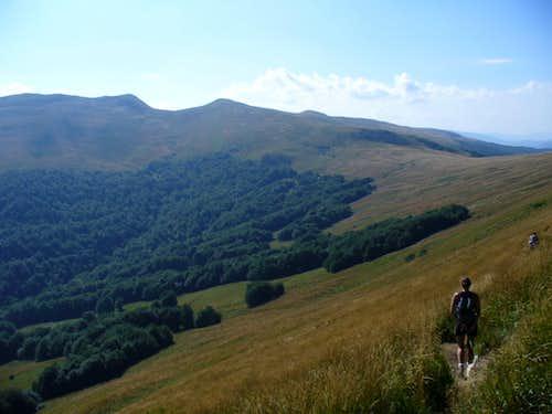 view of Tarnica