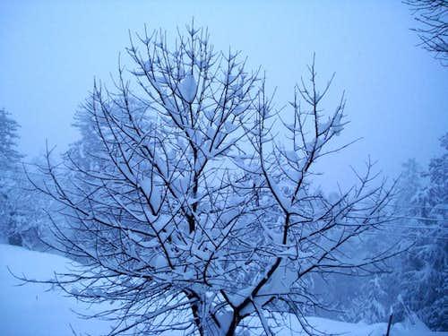 Winter in Kaghan Valley