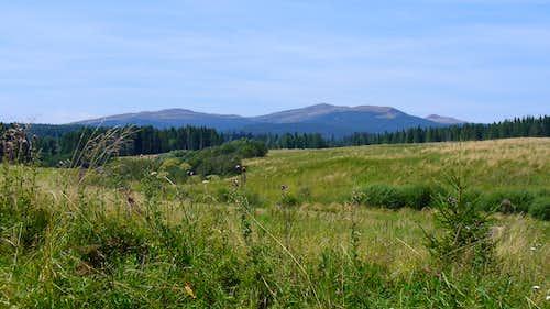 Polonyna Bukowska (the Halicz range)