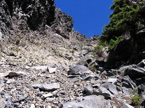 Looking up the south gully.