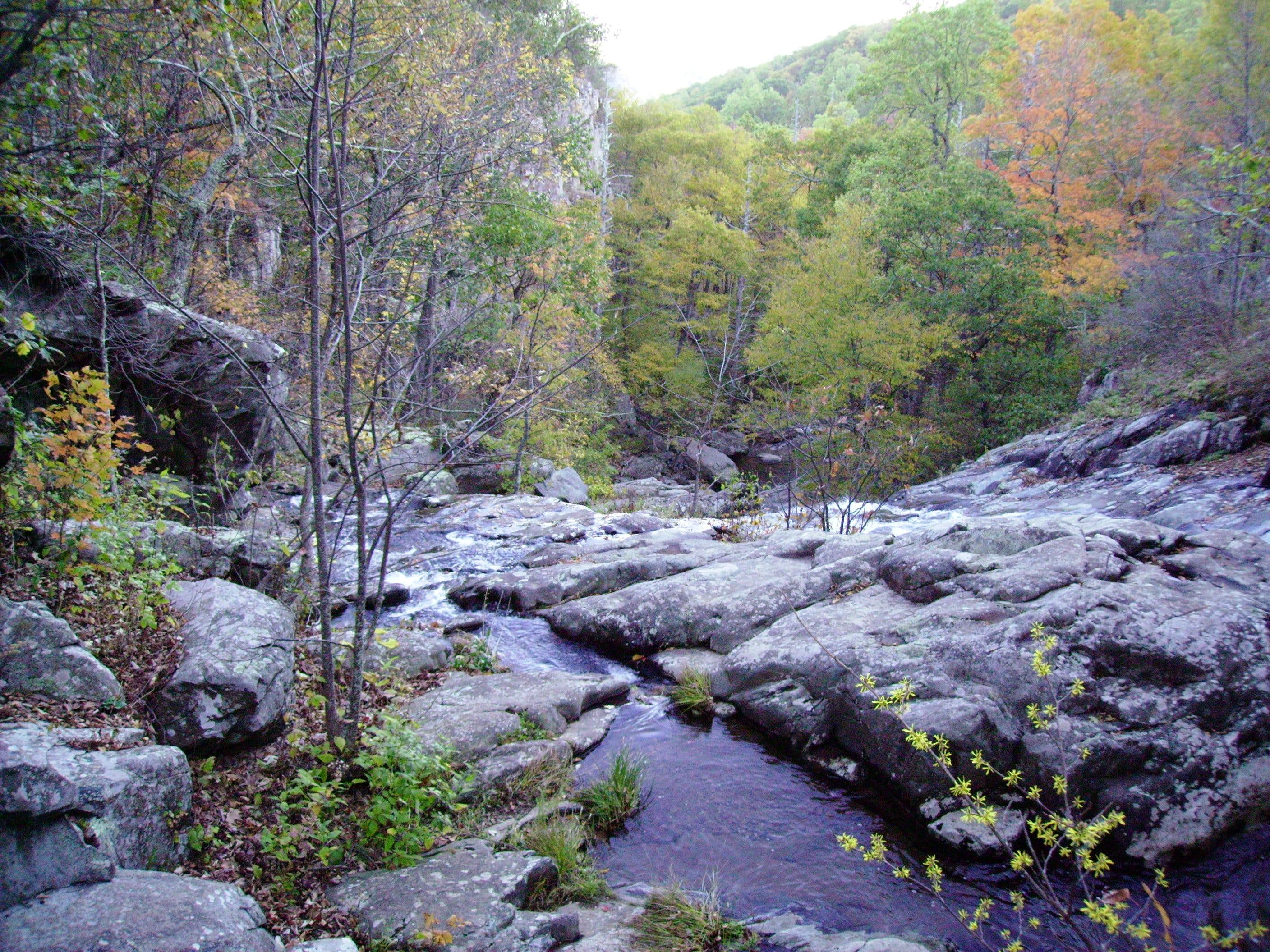 Whiteoak Canyon