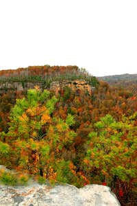 Bluff and Fall Colors (BSF)