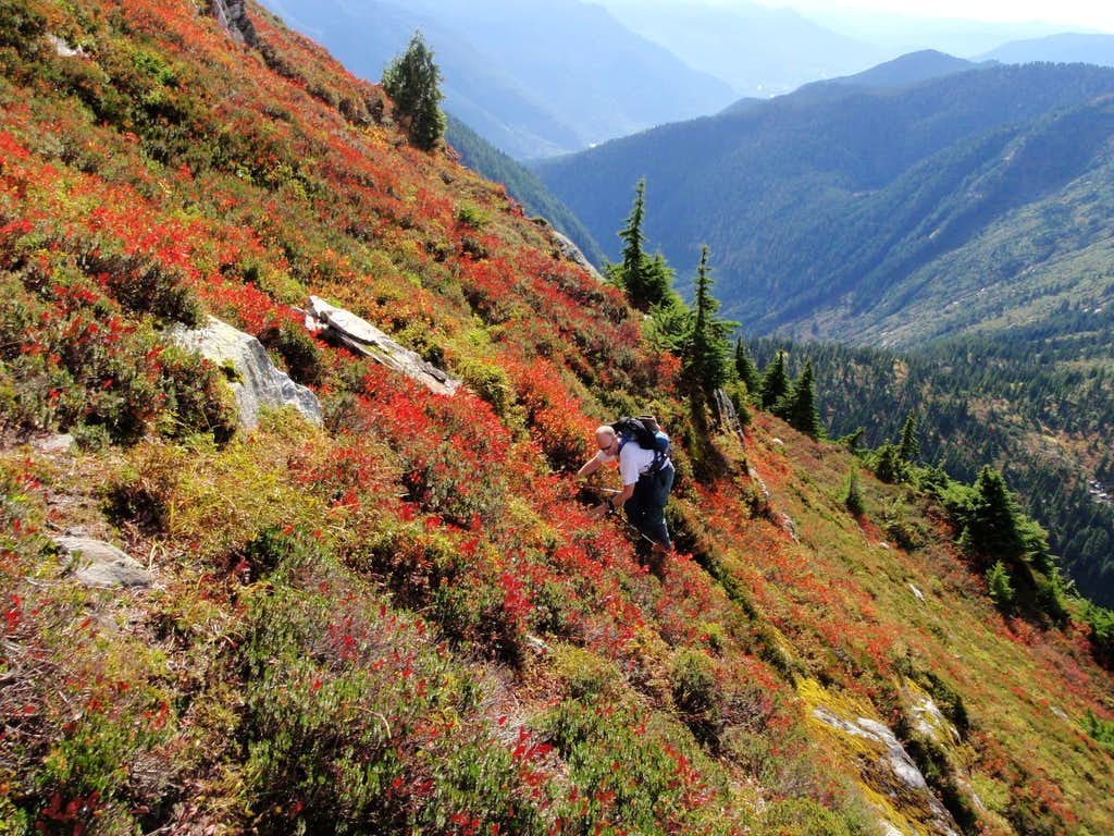 Fall Colors On Trappers Peak
