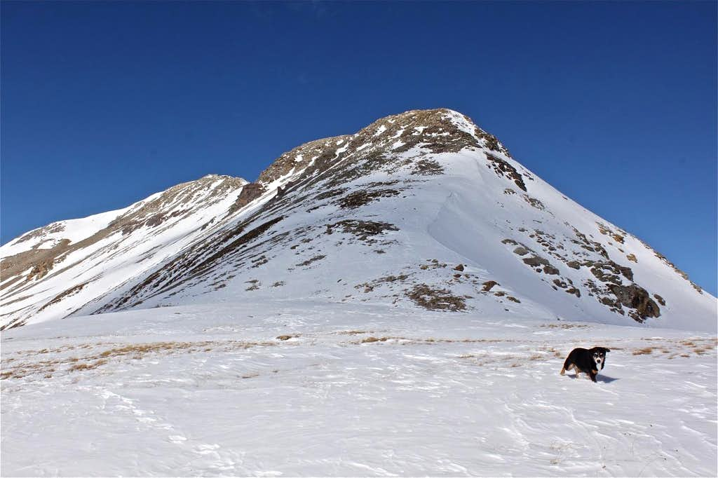 The view of the summit