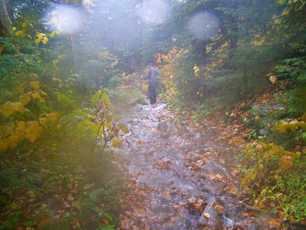 Trail = Stream