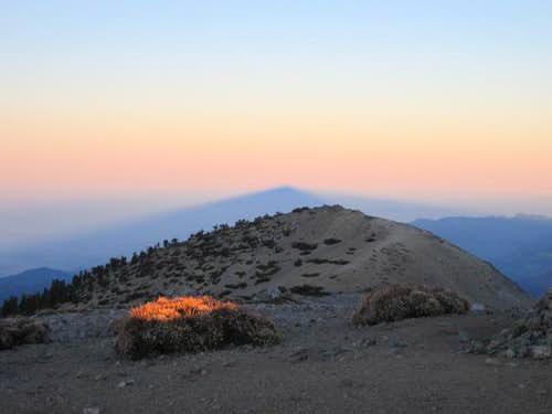 Mt. Baldy Summit Shadow