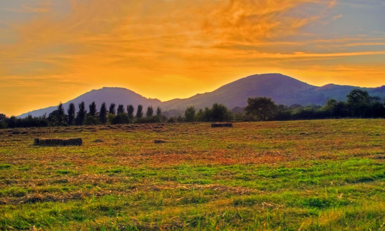 Moel Y Golfa And Middletown Hill  Photos, Diagrams