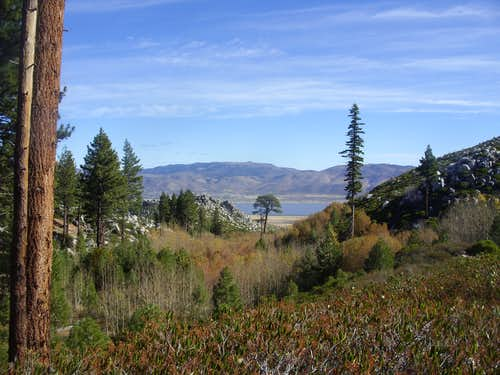 Fall colors in the hills above Washoe Valley