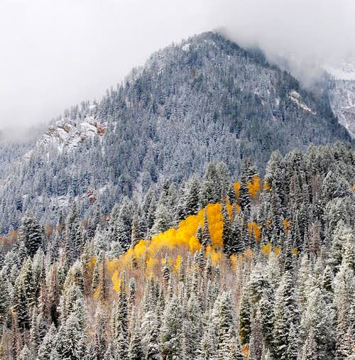 Fall Snow Storm above Tibble Fork