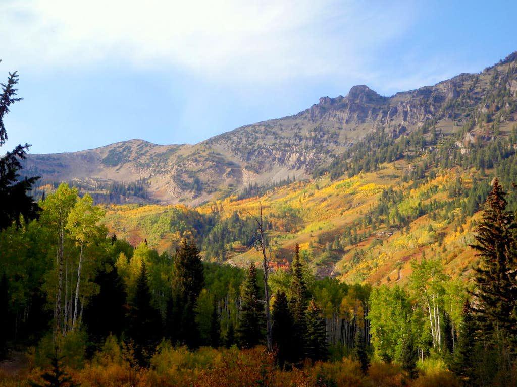 Mineral Basin Area Autumn