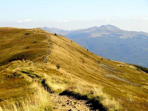 Ridge of Mount Połonina Caryńska
