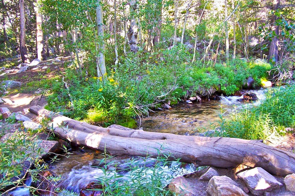 Log over North Fork of Bishop Creek