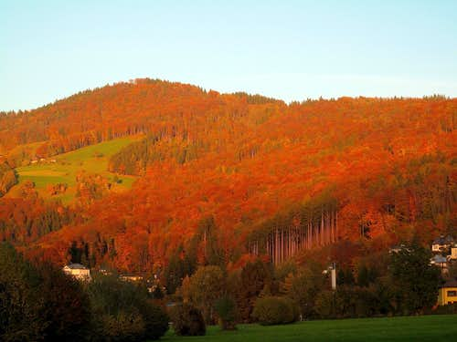 Intense autumn colors on the hills around Salzburg 1