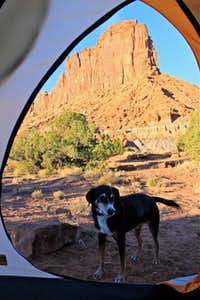 Bridger Jack Campground