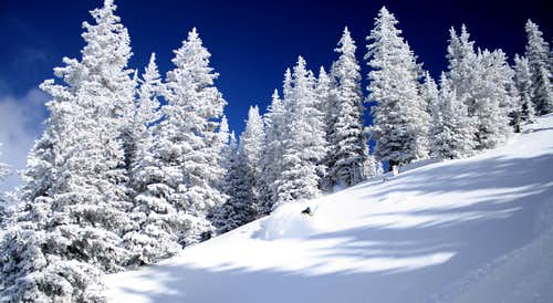 Backcountry Skiing is a Beautiful Thing.......