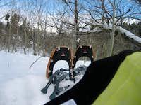 snowshoeing in S Idaho