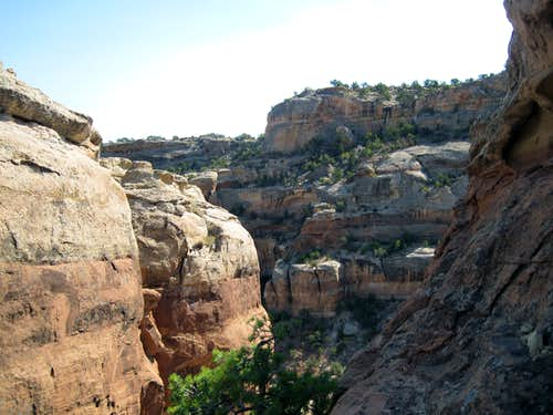 Colorado National Monument Sights