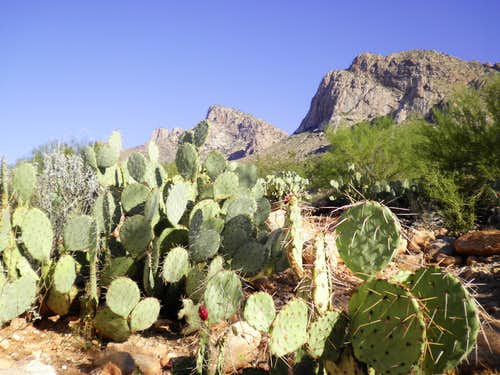 Northern ramparts of Pusch Ridge