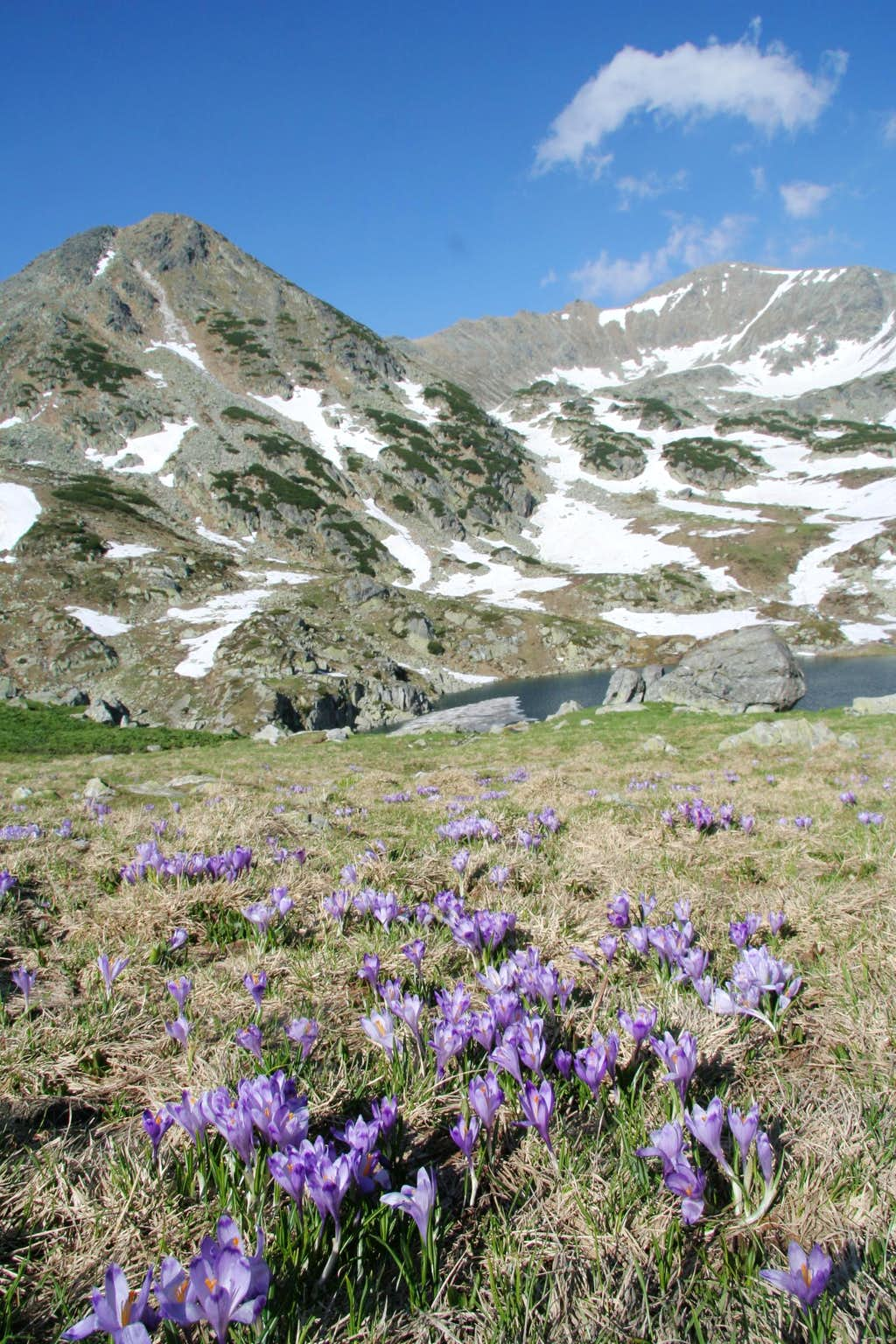 Retezat mountains - Bucura lake and Peleaga peak 2509m