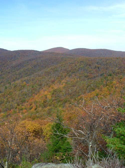 Jones Mountain Ridge and Fork Mountain