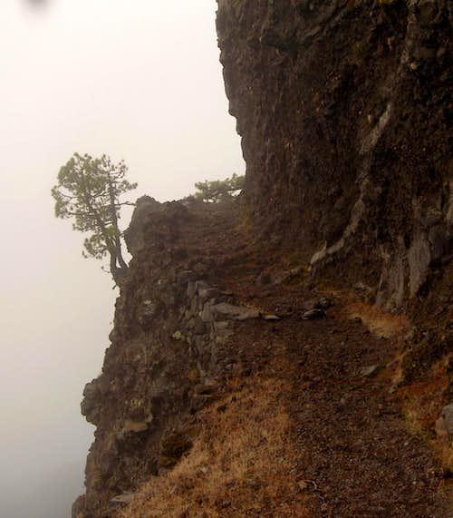 Side trail, Caldera de Taburiente