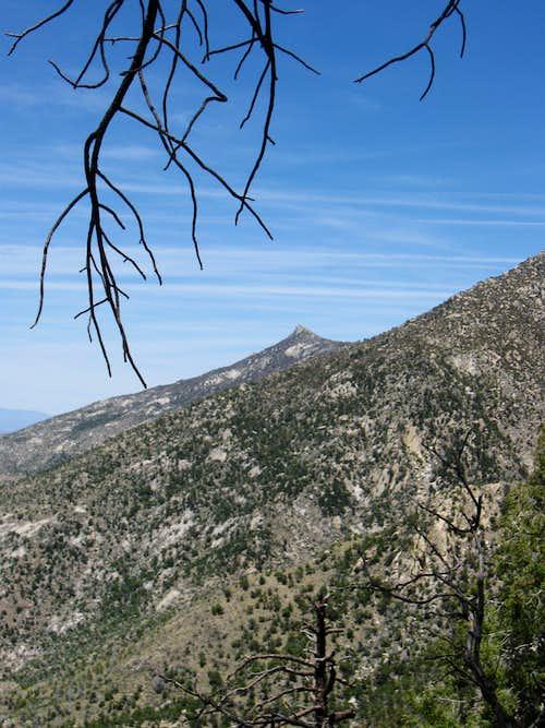 Samaniego Peak