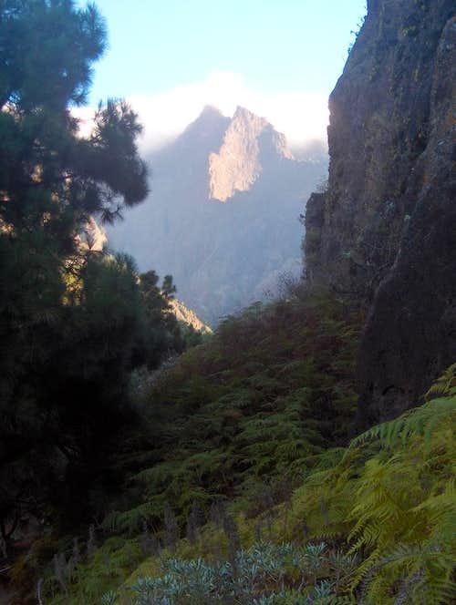 Deep down in Caldera de Taburiente