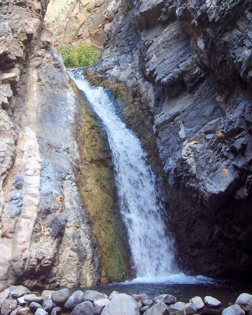 Rio Almendro Almargo
