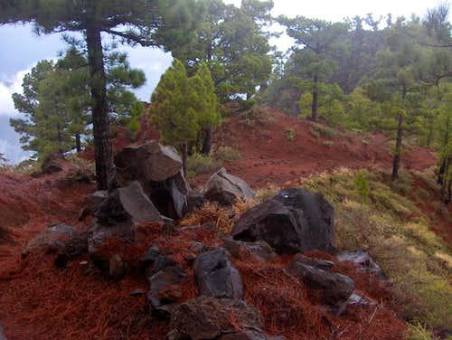 Hiking up Caldera de Taburiente
