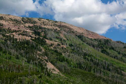 Box Canyon Peaks 3