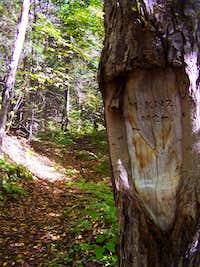McKenzie Mtn Carved Tree Sign