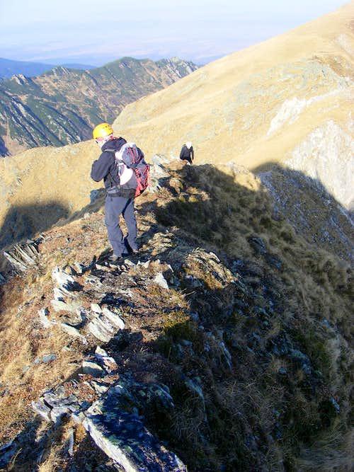 Buteanu ridge, Fgaras mountains, Romania