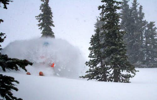 Blower Powder in November