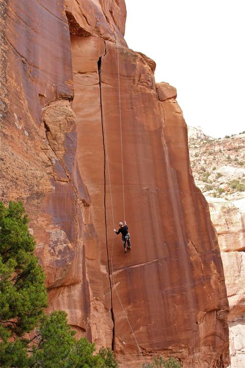 Rappel from Willie's Hand Jive