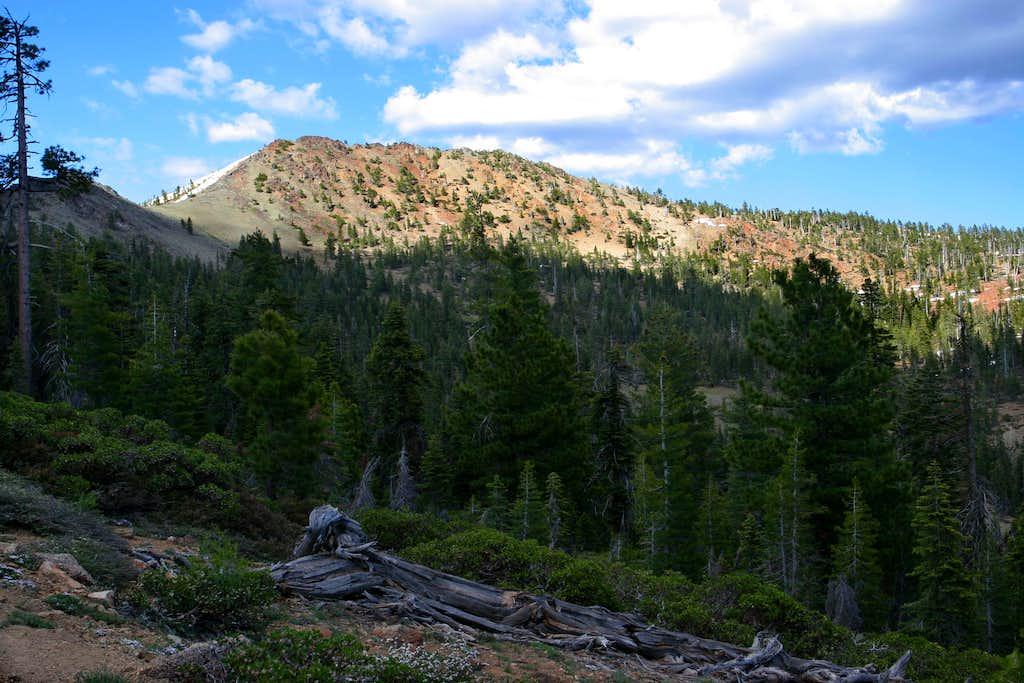Scott Mountains