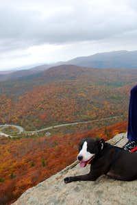 Danny enjoying the view.