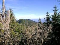 Mt. Mitchell Summit