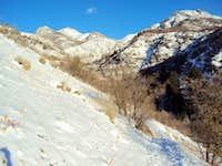 Trail into Adams Canyon