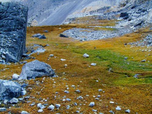 North Face Biv Site
