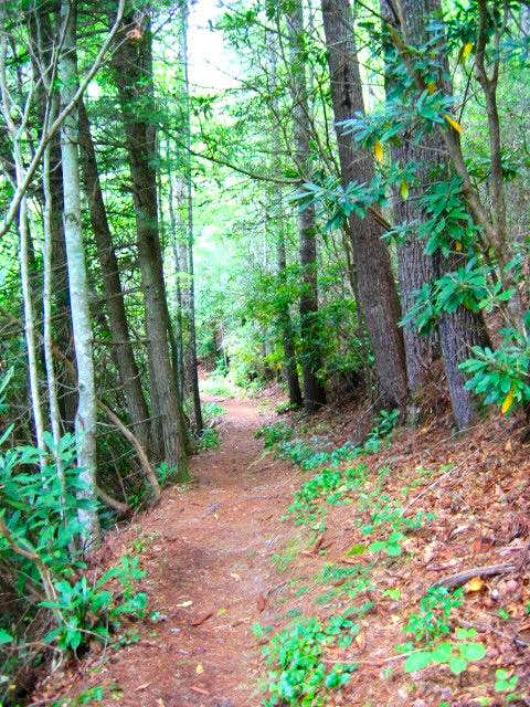 The Boogerman Trail, with...