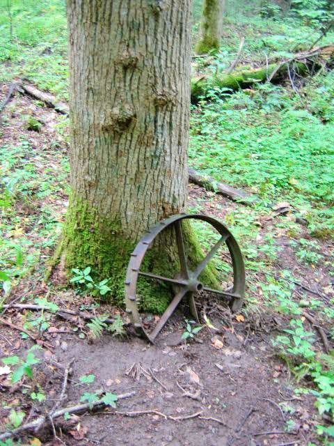 Old tractor wheel against a...