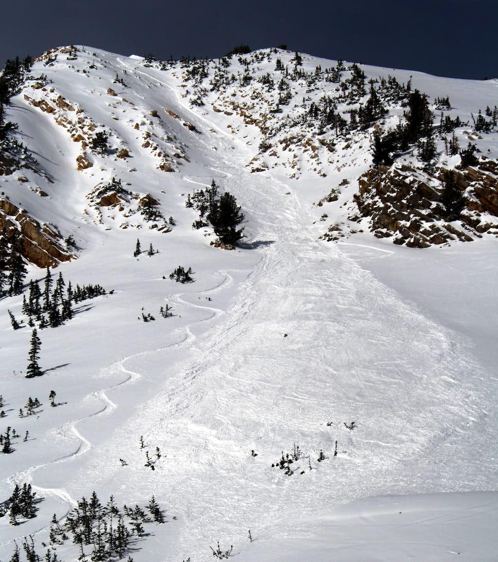 Avalanche in the Toleto Chute