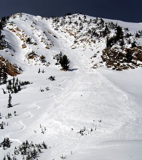 Avalanche in the Toleto Chute